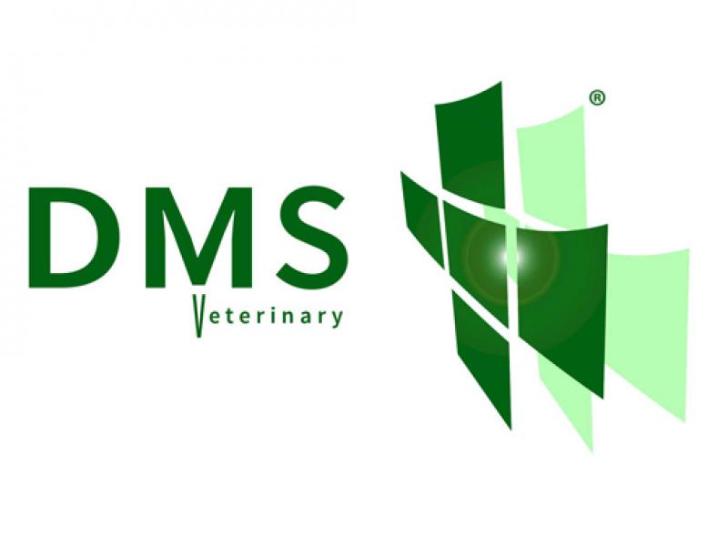 DMS-Logo-520x390